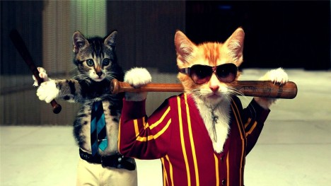 Cat Gangsters